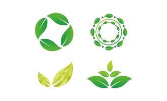 foglia natura concetto logo design vettoriale