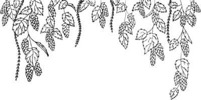 progettazione grafica del luppolo. bordo senza giunte di vettore disegnato nella tecnica dell'incisione. pagina del libro da colorare.