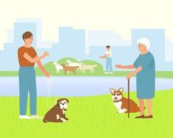 pembroke corgi con una signora anziana per una passeggiata in un parco per cani vettore