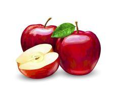 mele rosse, intere ea fette. frutta dolce su uno sfondo bianco. illustrazione realistica di vettore