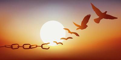 una catena che si trasforma in colombe vettore