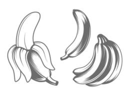 icone vettoriali di banana