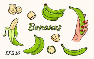 set vettoriale di banane. banana in mano, spicchi di banana, banane in un mucchio. banane verdi.