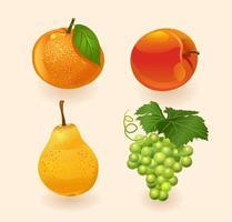 frutta isolata su uno sfondo chiaro arancia, pesca, pera, uva. set di frutta. illustrazione vettoriale