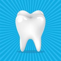 dente denti vettore