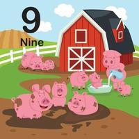numero di istruzione per bambini con 9 maiale felice sull'illustrazione vettoriale fattoria