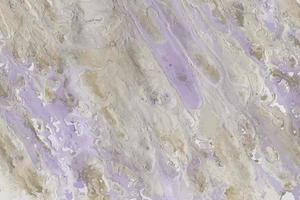 sfondo dipinto ad olio liquido acrilico astratto viola, viola e beige vettore