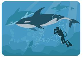 vettore del fotografo delle balene