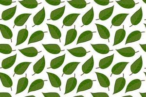 sfondo tropicale con foglie. foglia sfondo ripetuto. illustrazione vettoriale seamless pattern. disegno astratto esotico moderno.