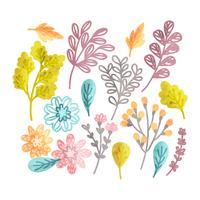 Elementi floreali disegnati a mano di vettore
