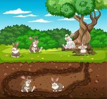 tana sotterranea degli animali con la famiglia dei conigli vettore