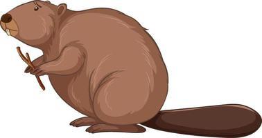 personaggio dei cartoni animati di castoro isolato su priorità bassa bianca vettore