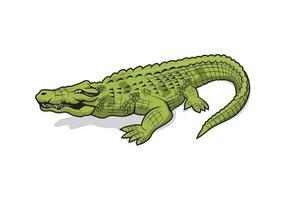 disegno del personaggio dei cartoni animati di coccodrillo alligatore vettore