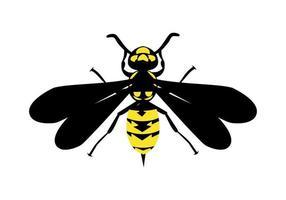 illustrazione di design giacca gialla vettore
