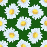 modello senza cuciture di fiori di camomilla vettore