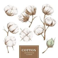 collezione di elementi in cotone vettore