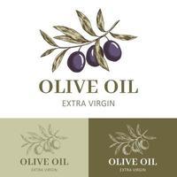 etichetta di olio d'oliva con ramo d'ulivo vettore
