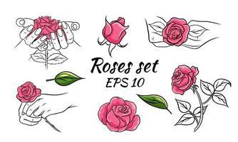 set di rose. rose rosa. raccolta di illustrazioni vettoriali con fiori. boccioli, foglie, rose in mano.