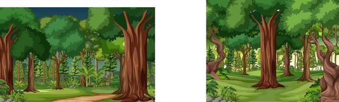 scena della giungla con liane e molti alberi vettore
