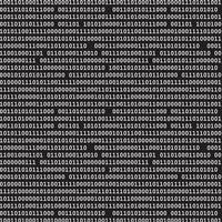 modello binario nero vettore