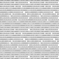 modello binario bianco vettore