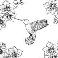 colibrì monocromatico disegnato a mano e orchidee. illustrazione in bianco e nero con piccoli colibrì e fiori in volo. disegno vettoriale. vettore