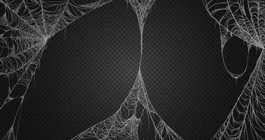 realismo di ragnatela impostato. isolato su sfondo nero trasparente. ragnatela per halloween, decorazioni spettrali, spaventose, horror vettore