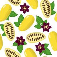 Vector cartoon seamless pattern con lardizabala frutti esotici, fiori e foglie su sfondo bianco