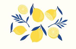 set di limoni disegnati. agrumi, limoni, lime. illustrazione vettoriale. elementi isolati vettore