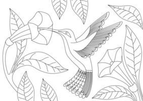 libro da colorare per bambini con colibrì vettore