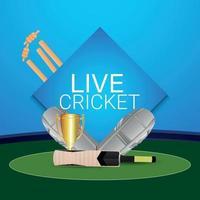 torneo di cricket dal vivo con ornamento di cricket su sfondo creativo vettore