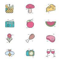collezione di icone di picnic vettore
