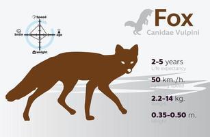 illustrazione delle informazioni della volpe su uno sfondo vettoriale 10