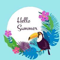 tucano uccelli esotici fiori tropicali palma giungla foglie e piante monstera e cornice di fiori di ibisco vettore