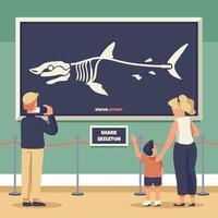 scheletro di squalo al museo vettore