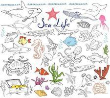 insieme di schizzo disegnato a mano di grandi animali di vita di mare scarabocchi di pesce squalo polpo stella granchio balena tartaruga cavalluccio marino conchiglie e scritte isolate vettore