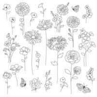 disegni di contorno nero di fiori botanici disegnati a mano vettore