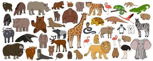 set di cartone animato isolato contorno savana africano americano foresta animali vettore tigre leone rinoceronte bufalo zebra elefante giraffa coccodrillo tapiro ippopotamo orso orangutan pinguino fenicottero per bambini