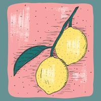 Illustrazione di limone vintage vettore