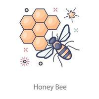 alveare di miele vettore