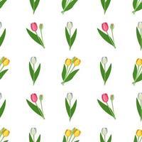 seamless con fiori primaverili tulipani di diversi colori. insieme di piante con boccioli luminosi e foglie verdi vettore