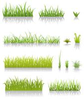 Set di erba verde