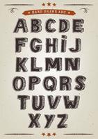 Insieme di alfabeto elegante disegnato a mano vettore
