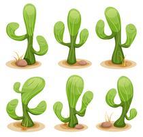 Set di cactus messicani vettore