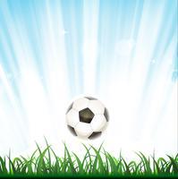 Sfondo di calcio vettore