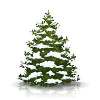 Albero di pino di Natale con la neve vettore
