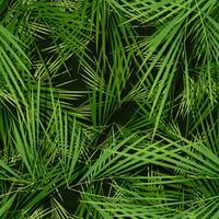 Wallpaper di foglie di palme senza soluzione di continuità vettore