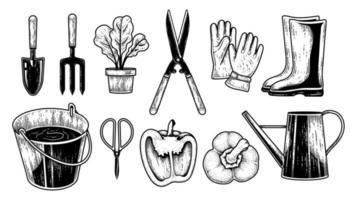 schizzo vettoriale set di attrezzi da giardinaggio. cazzuola, forchetta, vaso per piante, cesoie per siepi, guanti, stivali, secchio, forbici, peperone e annaffiatoio illustrazione disegnata a mano