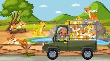 scena del safari di giorno con il gruppo di leopardi sul camioncino vettore