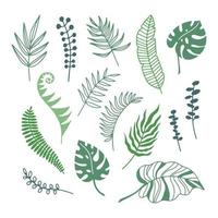 rami di colore disegnati a mano di foglie di piante tropicali isolati su sfondo bianco. illustrazione vettoriale silhouette di contorno. design per motivo, logo, modello, banner, poster, invito, biglietto di auguri